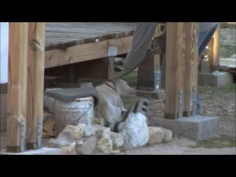NEW SERIES: Pit Bulls and Parolees
