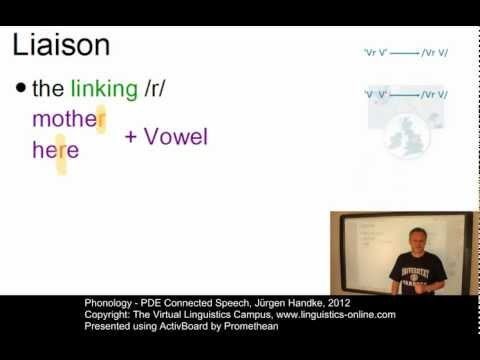 Phonology - PDE Connected Speech