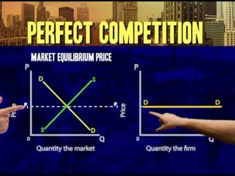 Perfect competiton:  Demand curve for individual producer