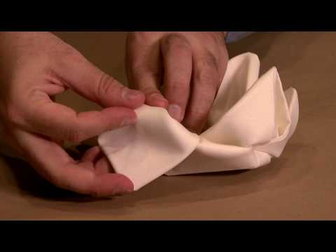 Napkin Folding Demonstration - Real time