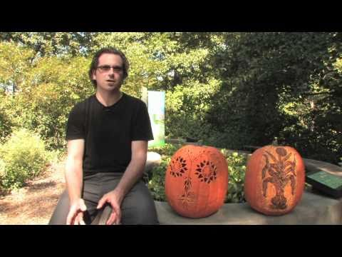 Pumpkin Artist Michael Anthony Natiello