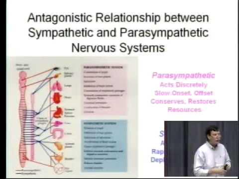 Saylor PSYCH101: Biological Bases of Mind and Behavior I