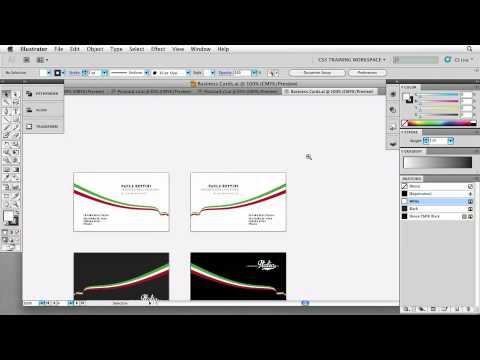 Total Training for Adobe Illustrator CS5 Chapter 1 Part 6