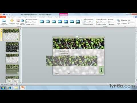 PowerPoint: How to crop photos to shapes | lynda.com tutorial