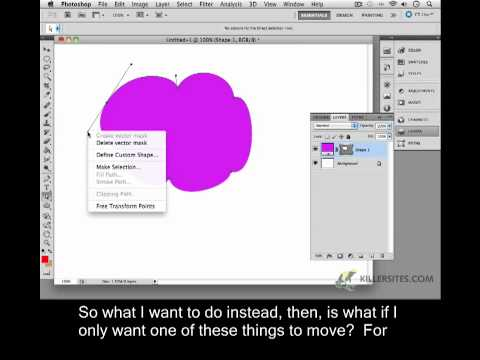 Photoshop CS5 Closed Captioned - Vector Selections
