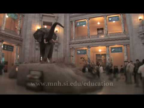 National Museum of Natural History - Teacher Orientation Video