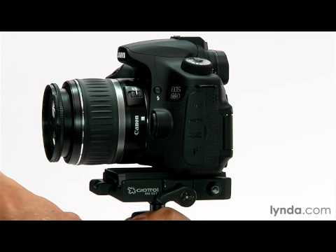 SLR camera overview: Exploring image sensors and viewfinders | lynda.com