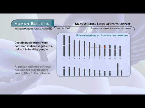 Science Bulletins: Massive Study Links Genes to Disease