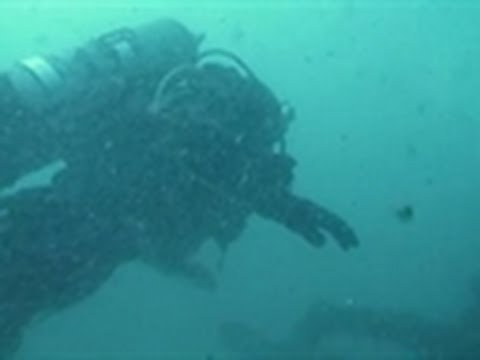 Surviving the Cut - Scuba Diver Out of Air
