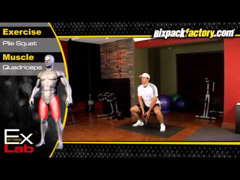 Plie Squat : Best Leg Exercises ( Quadriceps Exercises )