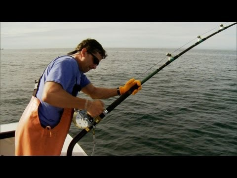Wicked Tuna - Tricky Dave