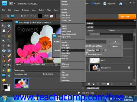 Photoshop Elements 9.0 Tutorial Creating New Layers Adobe Training Lesson 10.3