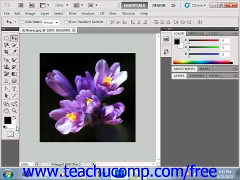 Photoshop CS5 Tutorial Foreground & Background Colors Adobe Training Lesson 4.5