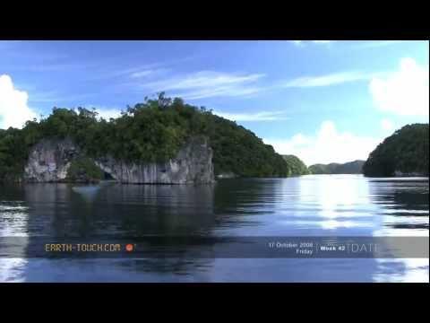 Nature's paradise: A marine wonderland