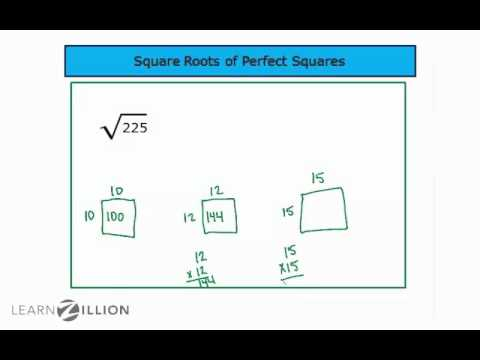 Find square roots of perfect squares - 8.EE.2