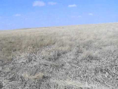 Hiking on the Shortgrass Prairie on the Nebraska-Colorado Border