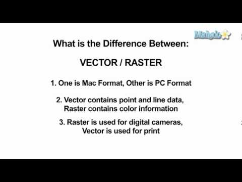 Learn Adobe Photoshop Quiz - Difference Between Raster and Vector