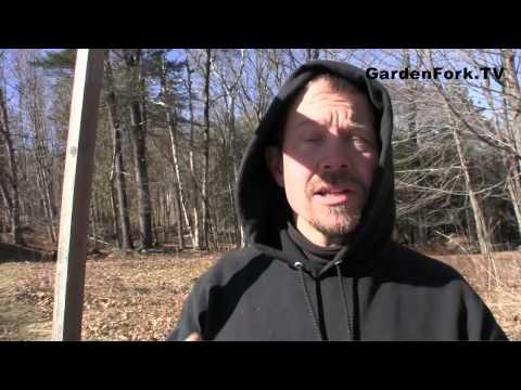 How to prune a tree, Tree Pruning GardenFork.TV