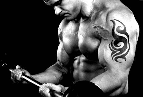 The Best Forearm Exercises and Workout. Lift heavier weights now!