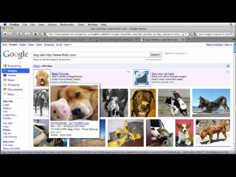 Flickr tutorial: How to search for photos using Google | lynda.com