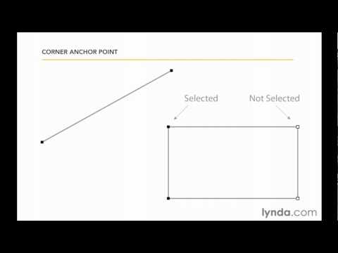 Understanding anchor points in Illustrator | lynda.com overview
