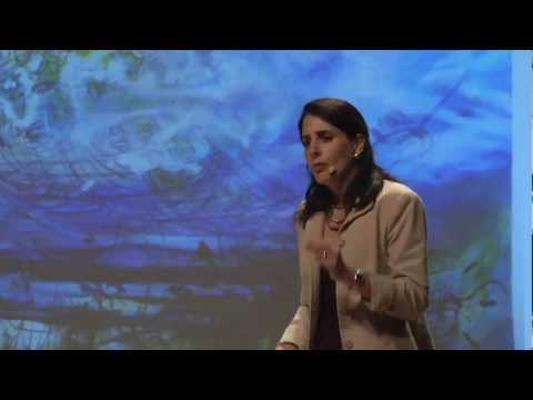 TEDxManhattanBeach - Mary Helen Immordino-Yang - Embodied Brains, Social Minds