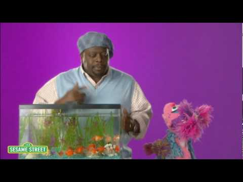 Sesame Street: Cedric the Entertainer: Canteen
