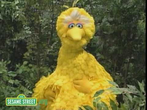 Sesame Street: Big Bird Wants To Whistle