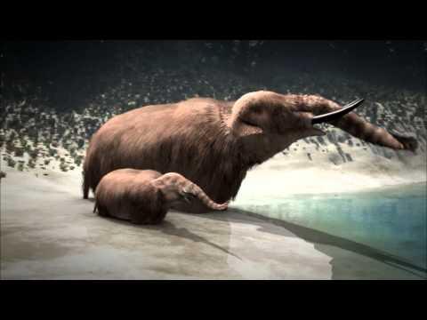 NOVA | Ice Age Death Trap | PBS