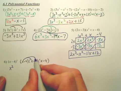 6.1b Polynomial Functions - Algebra 2