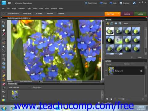 Photoshop Elements 9.0 Tutorial Moving the Image Adobe Training Lesson 3.9