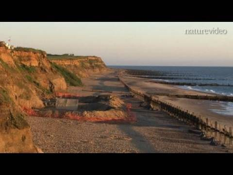 The first Britons: by Nature Video