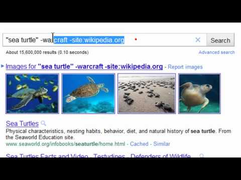 Basic Search Techniques with Google
