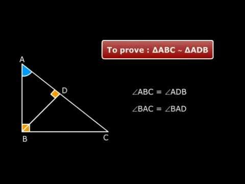 AA Similarity Criterion - Class X Maths Triangle Tutorials Online NCRET Solutions