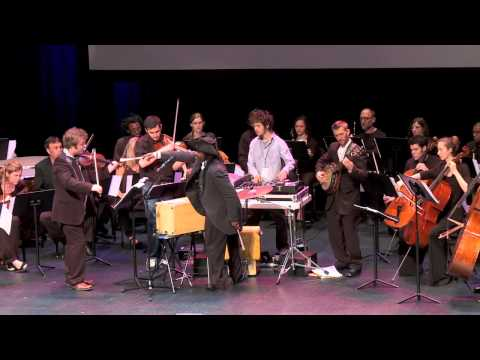 TedxNashville - Roy Wooten - Black Mozart Project