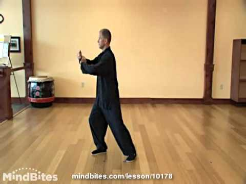 Tai Chi Made Easy - Lesson 2 - Grasp Sparrow Tail