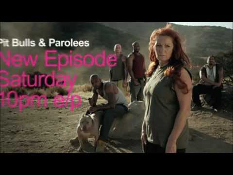 Pit Bulls & Parolees: You Watch, We Give