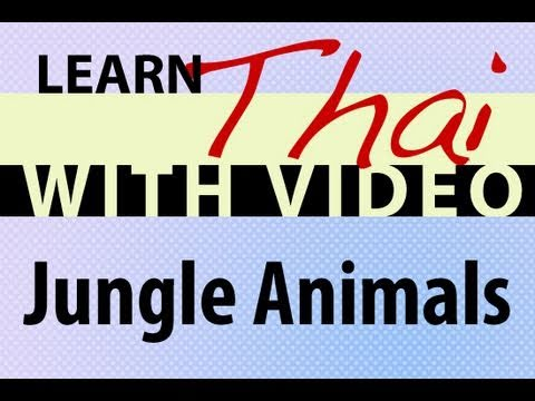 Learn Thai with Video - Jungle Animals
