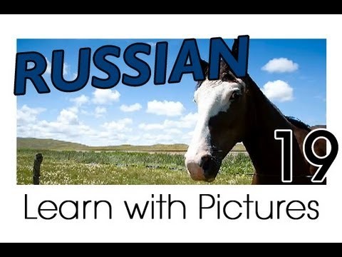 Learn Russian - Russian Farm Animals Vocabulary