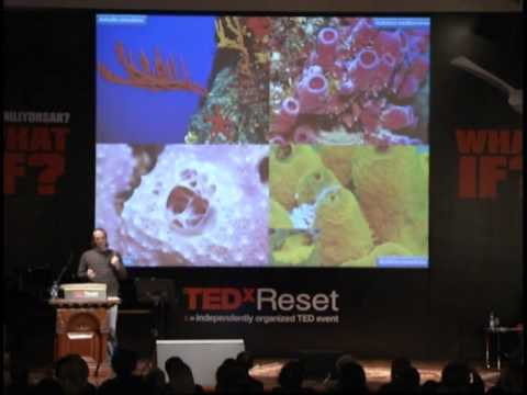 TEDxReset 2011 - Mert Gokalp - What if we didn't see while looking?
