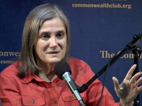 "Amy Goodman Reports on ""Collateral Murder"" WikiLeaks Video"