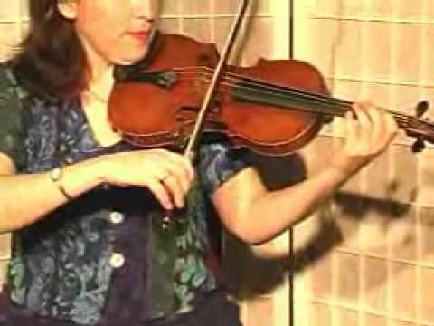 Violin Lesson - How To Play Danman's Print Library # 111