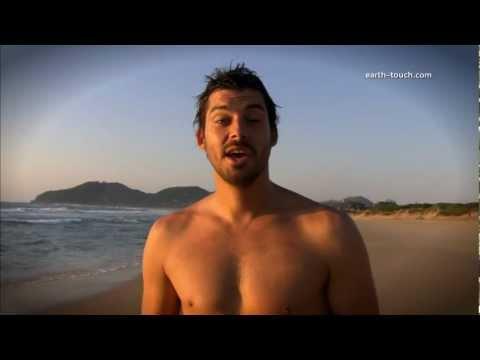 Surfer interview FAIL | Life's a Beach Series Trailer