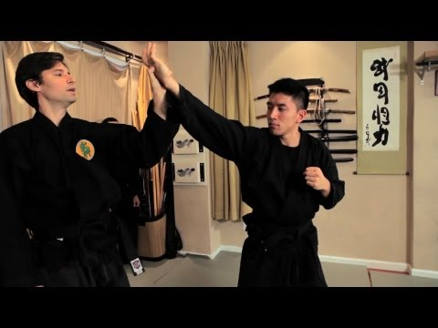 Where Can I Get the Best Ninjutsu Training?