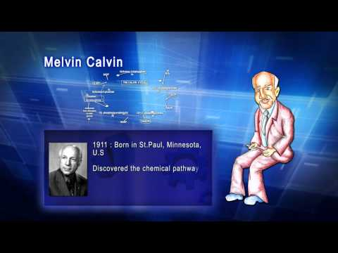 Top 100 Greatest Scientist in History For Kids(Preschool) - MELVIN CALVIN