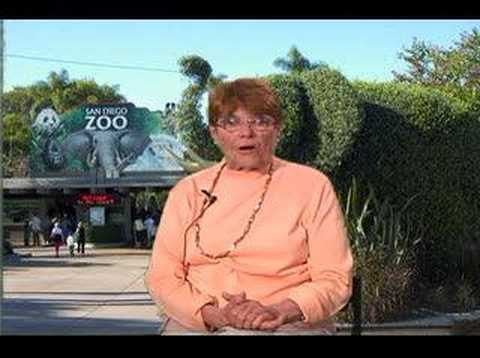 San Diego Zoo at 90: Fond Memories