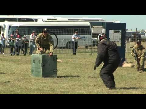 Military Working Dog Display at Avalon 2011