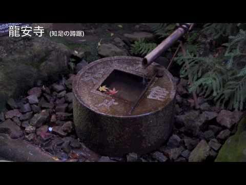 日本の寺院 - Scenes from Temples in Japan