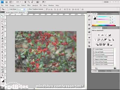 Intro to Photoshop CS4 Lesson 11: Layer Adjustment