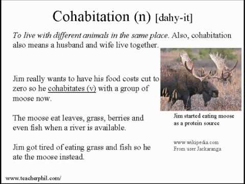 Learn Vocabulary and Pronunciation English Lesson 18: You can't just eat grass